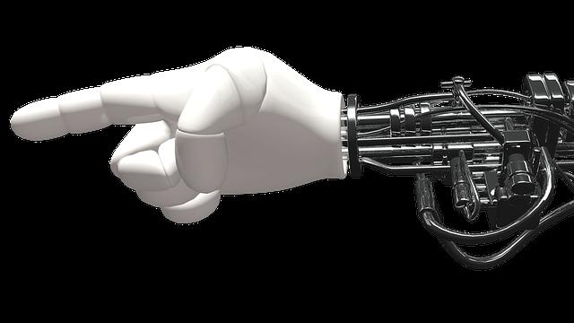robots txt show