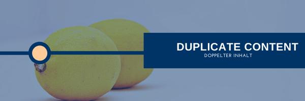 Duplicate-Content (Doppelter Inhalt)