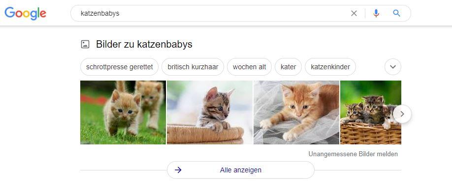 Google Bilder Ranking dank Alt-Attribut